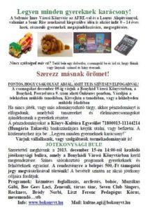 2013_karacsony_bokonyvt